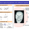 Antibacterial Bio-Based Polymers for Cranio-Maxillofacial Regeneration Applications